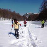 雪もまだまだたっぷり!スノーシューツアーは開催期間延長です~!